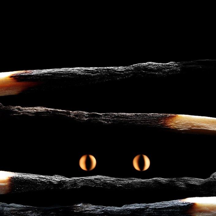 matchstick-art-stanislav-aristov-11
