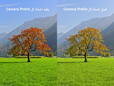 cameraprofile